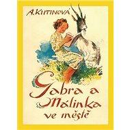 Kniha Gabra a Málinka ve městě - Kniha