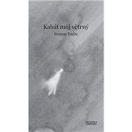 Kniha Kabát můj větrný - Kniha