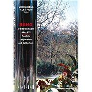 Kniha Brno v proměnách staletí: Kapitoly z dějin města pod Špilberkem - Kniha