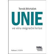 Unie ve víru migrační krize - Kniha