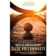 Nežijte dokonalostí, žijte přítomností - Kniha