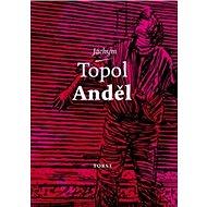 Anděl - Kniha