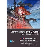 Chrám Matky Boží v Paříži Notre-Dame de Paris: dvojjazyčná kniha