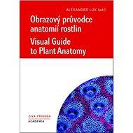 Obrazový průvodce anatomíí rostlin: Visual Guide to Plant Anatomy - Kniha