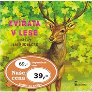 Zvířata v lese - Kniha