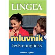 Česko-anglický mluvník: rozvažte si jazyk - Kniha
