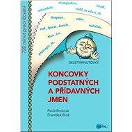Koncovky podstatných a přídavných jmen: Desetiminutovky - Kniha