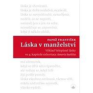Láska v manželství: Výklad Velepísně lásky ve 4. kapitole exhortace Amoris laetitia - Kniha