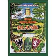 Kam dohlédne Blaník - Kniha