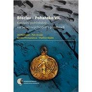 Břeclav Pohansko VII: Kostelní pohřebiště na Severovýchodním předhradí - Kniha