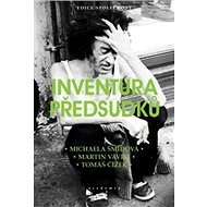 Inventura předsudků - Kniha