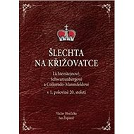 Šlechta na křižovatce: Lichtenštejnové, Schwarzenbergové a Colloredo-Mannsfeldové v 1.polovině 20. s - Kniha