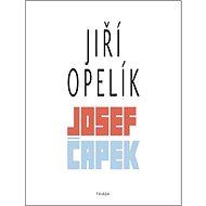 Josef Čapek - Kniha