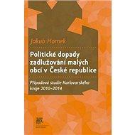 Politické dopady zadlužování malých obcí v České republice: Případová studie Karlovarského kraje 201 - Kniha