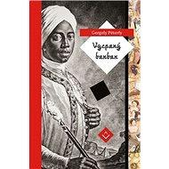 Vycpaný barbar - Kniha