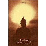 Moudrost nedokonalosti: Proces individuace v životě buddhisty - Kniha