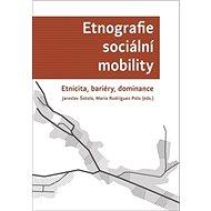 Etnografie sociální mobility: Etnicita, bariéry, dominance - Kniha