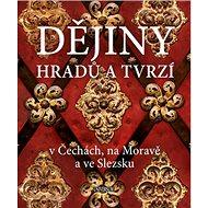 Dějiny hradů a tvrzí: v Čechách, na Moravě a ve Slezsku - Kniha