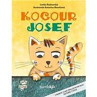 Kocour Josef - Kniha