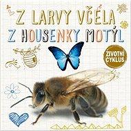 Z larvy včela Z housenky motýl: Životní cyklus - Kniha