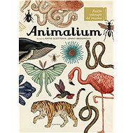 Animalium: Vítáme vás v muzeu - Kniha