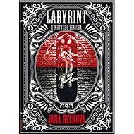 Labyrint u Mrtvého ženicha - Kniha