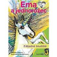 Ema a jednorožec Záhadné bludiště: Neobyčejný příběh o velkém kamarádství! - Kniha