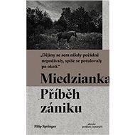 Miedzianka: Příběh zániku - Kniha