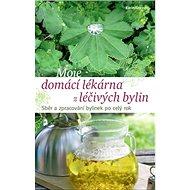 Moje domácí lékárna z léčivých bylin: Sběr a zpracování bylinek po celý rok