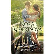 Láska nikdy nerezaví: Nikdo nemůže zmizet - Kniha