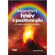 Proměňte hněv v pozitivní sílu: a využijte jej ve svůj prospěch! - Kniha