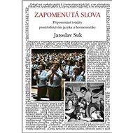 Zapomenutá slova: Připomínání totality prostřednictvím jazyka a hermeneutiky - Kniha
