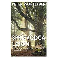 Sprievodca lesom: Čerpajte silu a energiu z potuliek lesom - Kniha