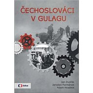 Čechoslováci v Gulagu - Kniha