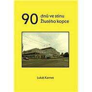 90 dnů ve stínu Žlutého kopce - Kniha