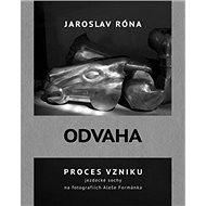 Odvaha: Proces vzniku jezdecké sochy na fotografiích Aleše Formánka - Kniha