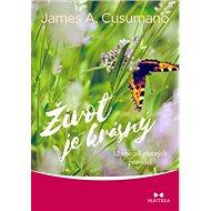 Život je krásný: 12 obecně platných pravidel - Kniha