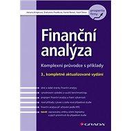 Finanční analýza: Komplexní průvodce s příklady - 3., kompletně aktualizované vydání - Kniha