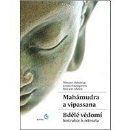 Mahámudra a vipassana Bdělé vědomí: Instrukce k retreatu - Kniha