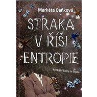 Straka v říši entropie - Kniha