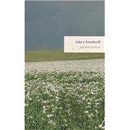 Léta v Arnoštově - Kniha