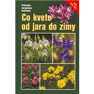 Co kvete od jara do zimy: Průvodce evropskou květenou - Kniha