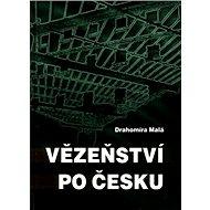 Vězeňství po česku - Kniha