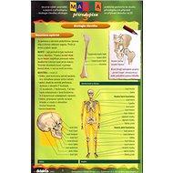 Mapka přírodopisu 3.díl: prakt. pomůcka ke studiu přír. - Kniha