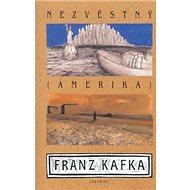 Nezvěstný (Amerika) - Kniha
