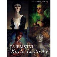 Tajemství Karla Laštovky - Kniha