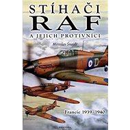 Stíhači RAF a jejich protivníci: Francie 1939 - 1940 - Kniha