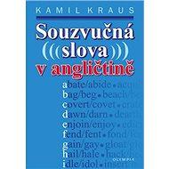 Souzvučná slova v angličtině - Kniha