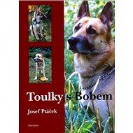 Toulky s Bobem - Kniha