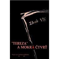 Tereza a mokrá čtvrť - Kniha